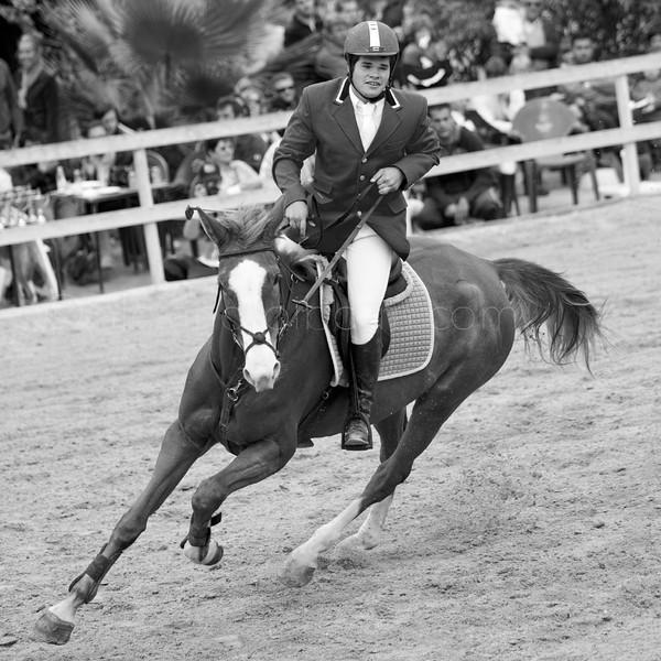 HORSES #010