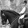 HORSES #011