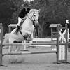 HORSES #005