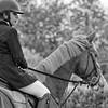 HORSES #006