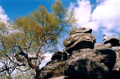 VYSOČINA Devět skal