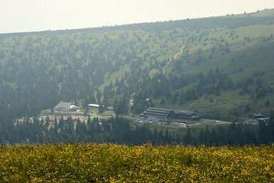 Pohled z Pradědu zpět na Ovčárnu.