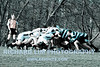 HHS-Rugby-003