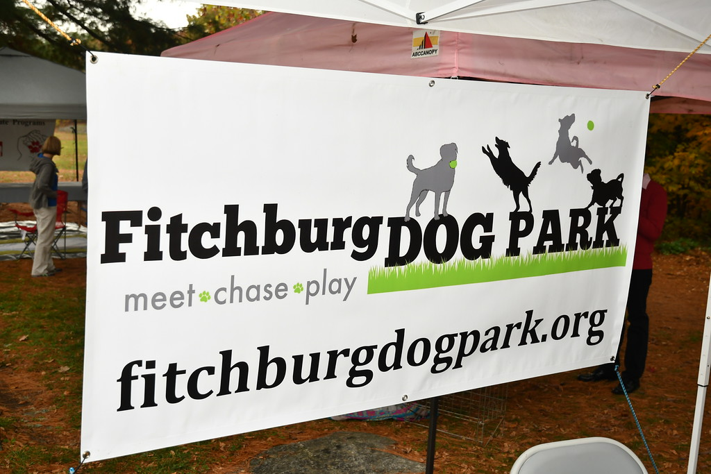 . Fitchburg Dog Park. Sentinel & Enterprise / Jim Fay