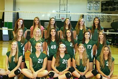 HS 2015 team
