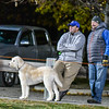 A furry fan takes in the action from the sidelines of Friday night's Abby Kelley and Ayer Shirley game at Kendrick Field. Nashoba Valley Voice/Ed Niser