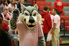 102309-PackerPinkOut-Assembly-hs-011