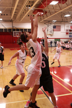Girls Varsity Basketball - 2/11/2011 Grant (Pink Out)
