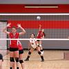 9/30/2014 - Girls Freshman Volleyball Grant