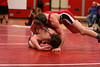 021809_Wrestling_TeamDistricts_849