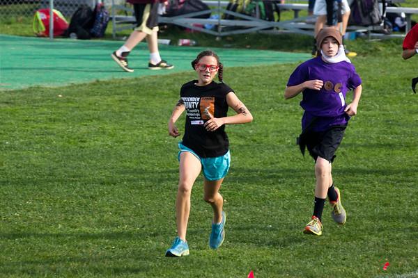 2014 Fairfax Relays - Race