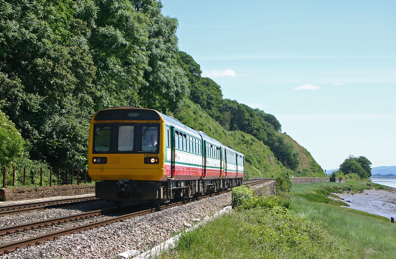 142074/143617, Gloucester-Cardiff Central, Gatcombe,near Lydney, 13-6-04.