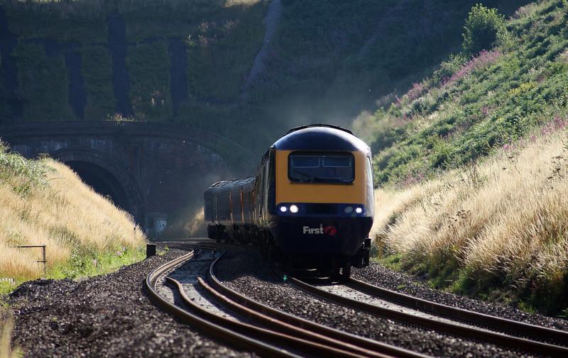 HST, 14.45 Penzance-London Paddington, Marlands, near Wellington, 25-7-10.
