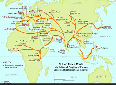 NATIONAL GEOGRAPHIC MIGRATION MAP