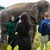 Houston Zoo 2013 Marketing Partners Summit-5002