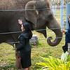 Houston Zoo 2013 Marketing Partners Summit-5036