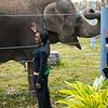 Houston Zoo 2013 Marketing Partners Summit-5038