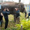 Houston Zoo 2013 Marketing Partners Summit-5034