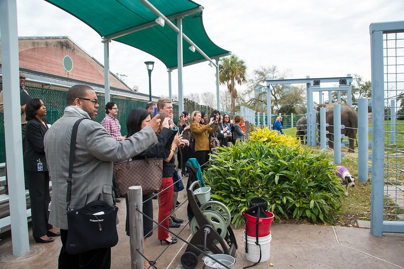 Houston Zoo 2013 Marketing Partners Summit-4933