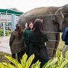 Houston Zoo 2013 Marketing Partners Summit-5004