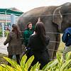 Houston Zoo 2013 Marketing Partners Summit-5006