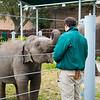 Houston Zoo 2013 Marketing Partners Summit-4939