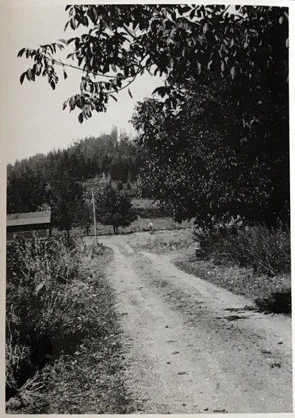 early photo of the Farm