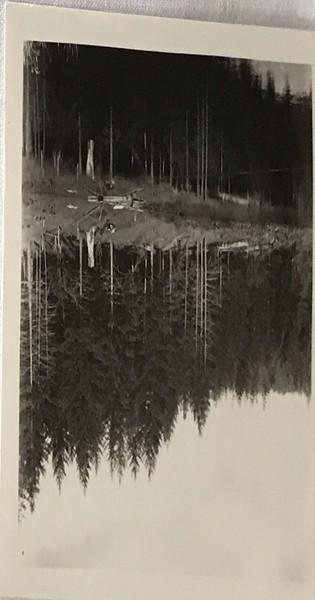 The lake at the Farm