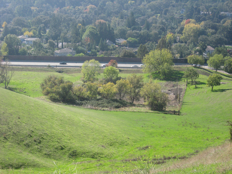 On the west side of the ridge is this fenced wetland of approximately one acre.  The water flows from the right front corner to the left rear and then into the culvert under the freeway (dark spot).