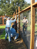 The pattern is to staple across the top of a section, then the bottom, and finally on the next fence post.  Don instructed us to use crow bars top and bottom to apply leverage to the fencing to stretch it tight against the frame and eliminate bubbles.  This is done one section ahead of the stapling.