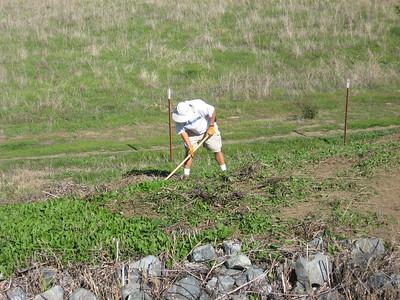 091117 Bayberry Weeding 2