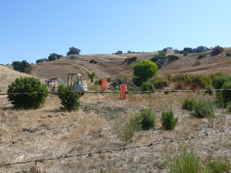 On Saturday 9-17, I found two of our oaks had been wrapped in orange plastic netting for safekeeping.  The small back hoe at the left was the only piece of machinery in evidence.