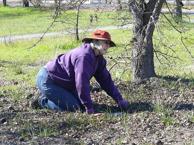 130209 HF grass planting