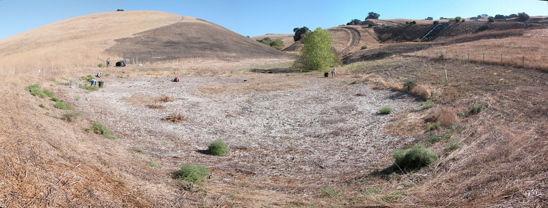 Restoration of Bayberry Pond