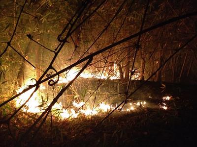 Chiang Rai Swiddening Fire Movie