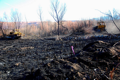 Dozers remove burnt tamarisk, following a fire on the Scott M. Matheson Wetlands Preserve near Moab. Photo taken 12-8-08 by Daniel Eddington, Utah Division of Wildlife Resources