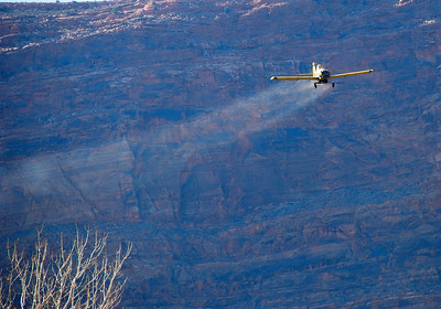 Aircraft drops seed over the Scott M. Matheson Wetlands Preserve, following a fire in October 2008. Shot by Daniel Eddington, Utah Division of Wildlife Resources on 12-5-08