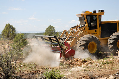 "A ""bullhog"" grinds pinyon-juniper trees into mulch at the West Coal Creek area northeast of Price. Removing pinyon-juniper is among several things land managers and wildlife biologists are doing to improve wildlife habitat in the area."