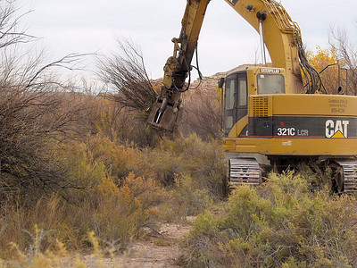 Tamarish is plucked from the San Rafael river bottom with an excavator.  After being uprooted, the slash will be stacked and burned.  Photo taken in October of 2008 by Kenneth Breidinger, Utah Division of Wildlife Resources.