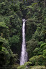 Vencejo Waterfall ~80 meter drop<br /> Rara Avis, Costa Rica