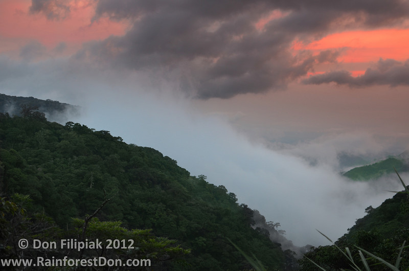A sunset in Monteverde, Costa Rica