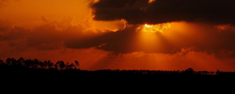 A summer sunset over the Florida Everglades