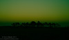 A three series variation of a post sunset photograph taken in the Florida Everglades.