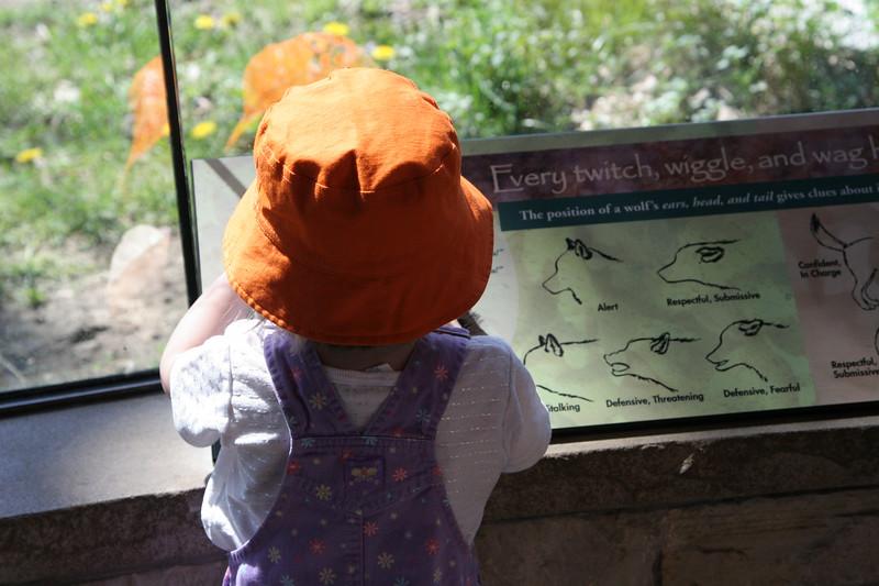04 29 07 Brookfield Zoo (1)