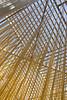 04 02 09 Blanton Museum w Molly, Sara & Titus-4259