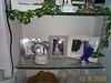 Glass Shelves 04 10-08-00