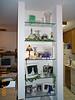 Glass shelves full 10-08-00