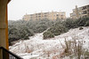 02 23 10 Snow in Austin-9465