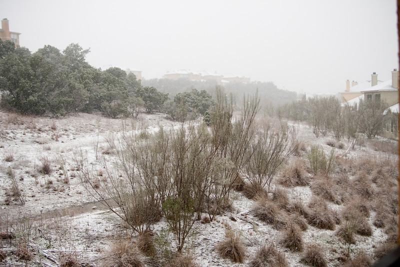 02 23 10 Snow in Austin-9456