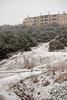 02 23 10 Snow in Austin-9467